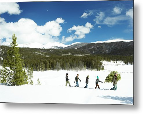 Three Quarter Length Metal Print featuring the photograph Family Carrying Christmas Tree In Forest by Thomas Northcut