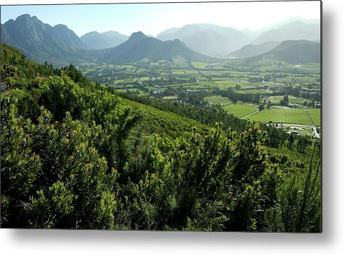South Africa Metal Print featuring the photograph Franschhoek Valley by Ruvanboshoff