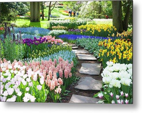 Flowerbed Metal Print featuring the photograph Garden Flowers 53 Xxxl by Lya cattel