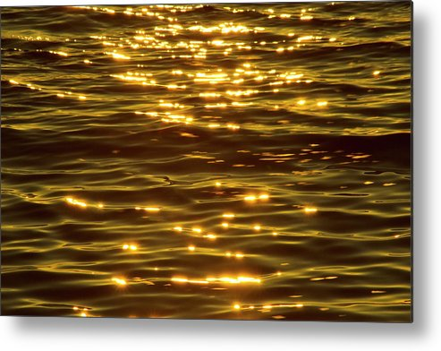 Bay Of Water Metal Print featuring the photograph Gold Sea by Benl