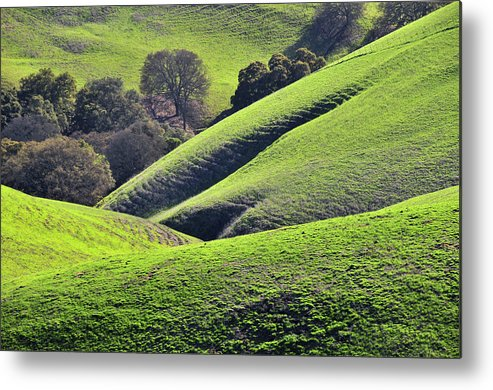 Scenics Metal Print featuring the photograph Green Rolling Hills Of Central by Mitch Diamond
