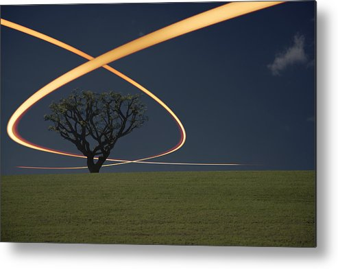 Scenics Metal Print featuring the photograph Light Trails Around Tree by Paul Taylor
