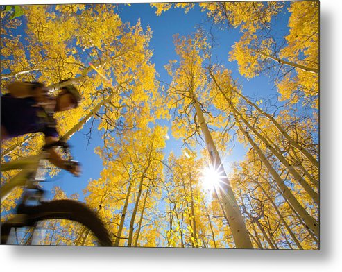 Mature Adult Metal Print featuring the photograph Man Ride by David Epperson