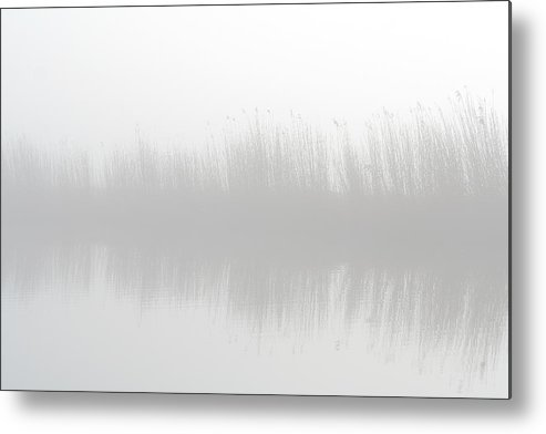 Scenics Metal Print featuring the photograph Misty Morning At The Riverside by Marceltb