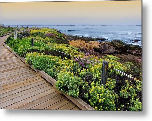Tranquility Metal Print featuring the photograph Moonstone Boardwalk by Stephanie Sawyer