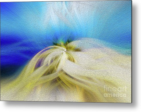 Art Print Metal Print featuring the digital art Radial Embrace by Kenneth Montgomery