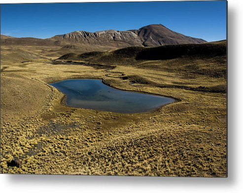 Tranquility Metal Print featuring the photograph Small Lagoon In Condoriri National Park by © Santiago Urquijo