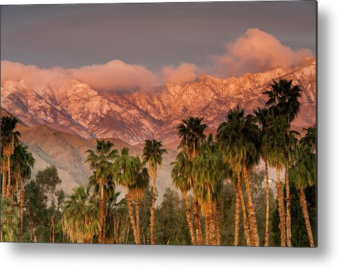 Scenics Metal Print featuring the photograph The San Jacinto And Santa Rosa Mountain by Danita Delimont
