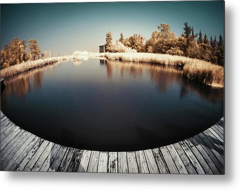 Tranquility Metal Print featuring the photograph Trees And Plants In A Pond by D3sign