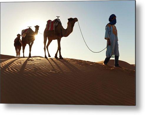 People Metal Print featuring the photograph Tuareg Man & Camels, Erg Chebbi, Sahara by Peter Adams