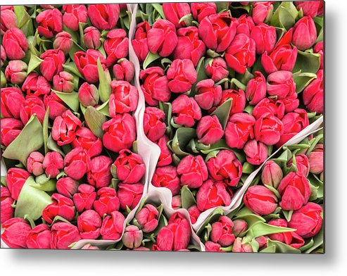 North Holland Metal Print featuring the photograph Tulips For Sale At A Flower Market by P A Thompson