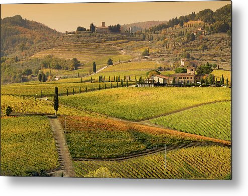 Scenics Metal Print featuring the photograph Tuscany Farmhouse And Vineyard In Fall by Lisa-blue