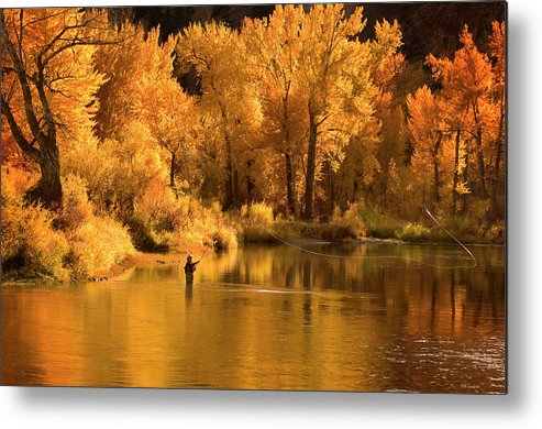 Orange Color Metal Print featuring the photograph Usa, Idaho, Salmon River, Mature Man by Steve Bly
