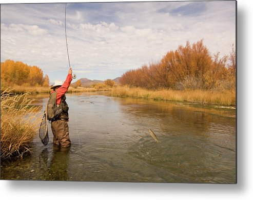 Mature Adult Metal Print featuring the photograph Usa, Idaho, Silver Creek, Mature Man by Steve Bly