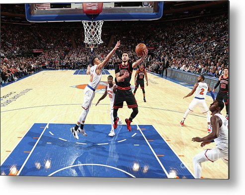 Chicago Bulls Metal Print featuring the photograph Zach Lavine by Nathaniel S. Butler