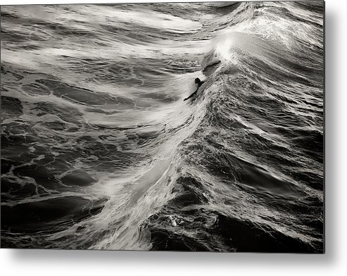 Body Surfer Metal Print featuring the photograph Body Surfing by Zayne Diamond Photographic