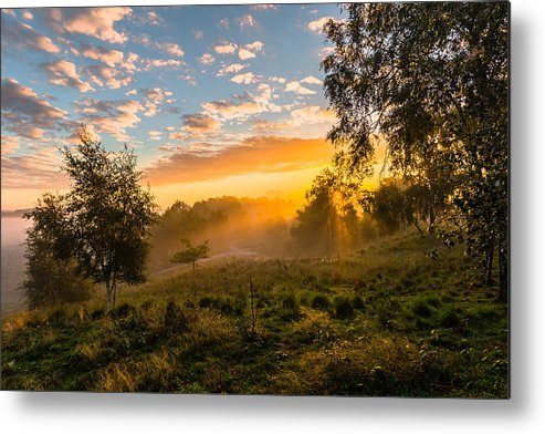 Scenics Metal Print featuring the photograph Golden Sunrise by William Mevissen