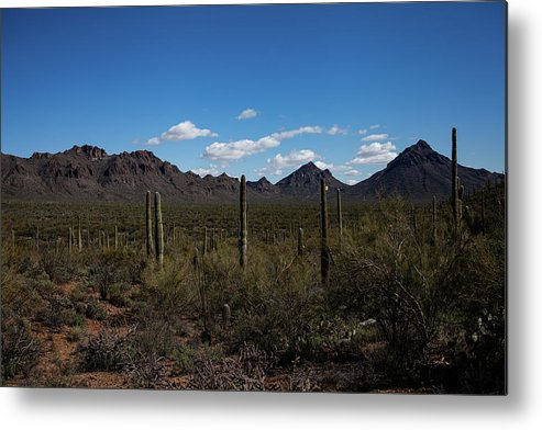 Mountains Metal Print featuring the photograph Sonoran landscape by John Heywood