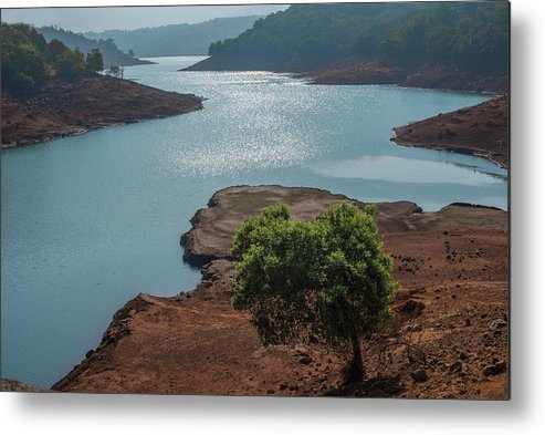 Prime Metal Print featuring the photograph Ssk 7297 Prime Location. Color by Sunil Kapadia