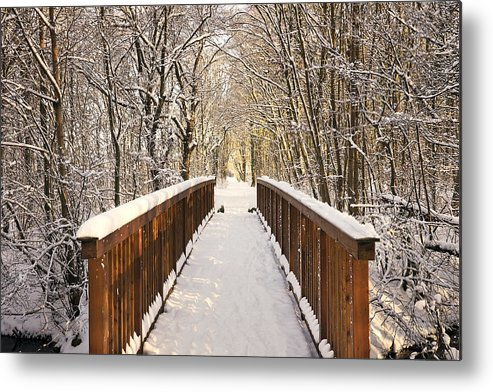 Snow Metal Print featuring the photograph Towards The Winter Wonderland by Bernd Schunack