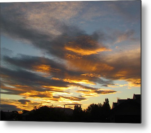 Sunset Through The Trees Metal Print featuring the photograph Sunset by Joyce Woodhouse