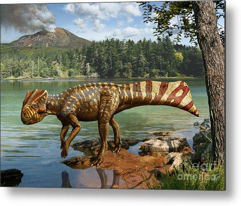 Dinosaur Digital Art Metal Print featuring the digital art Koreaceratops hwaseongensis by Julius Csotonyi
