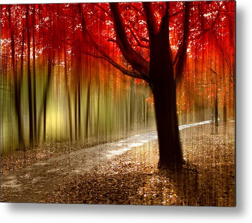 Autumn Metal Print featuring the photograph Painted With Light by Jessica Jenney
