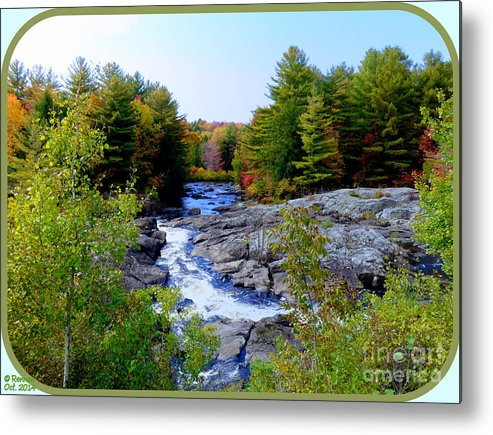 Nature Metal Print featuring the photograph The View From The Bridge by Rennae Christman
