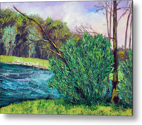 Plein Air Metal Print featuring the painting Bcsp 5 18 by Stan Hamilton