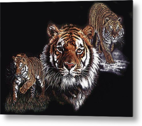 Panthera Metal Print featuring the drawing Myth Fable and Fantasy by Barbara Keith