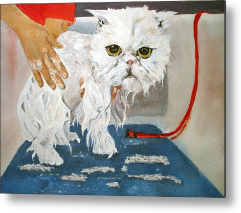 Cat Metal Print featuring the painting Pathetic Persian Gets A Bath by Kerra Lindsey
