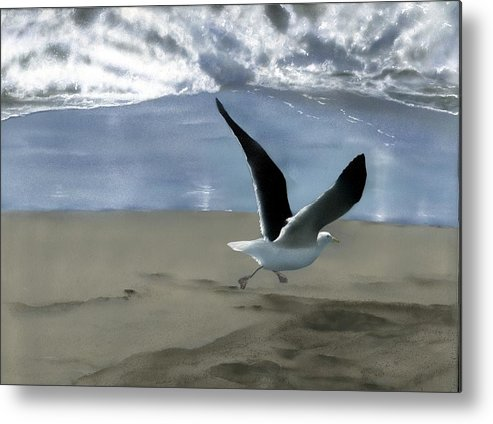 Gull Metal Print featuring the painting Running Gull by Charles Parks