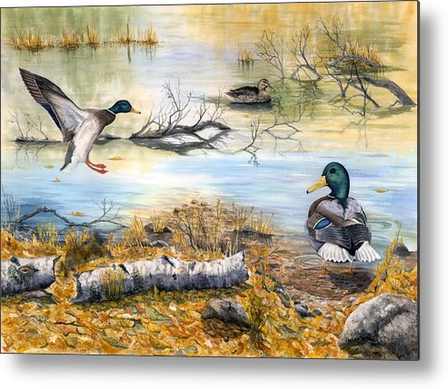 Mallerds Metal Print featuring the painting The Competition by Mary Tuomi