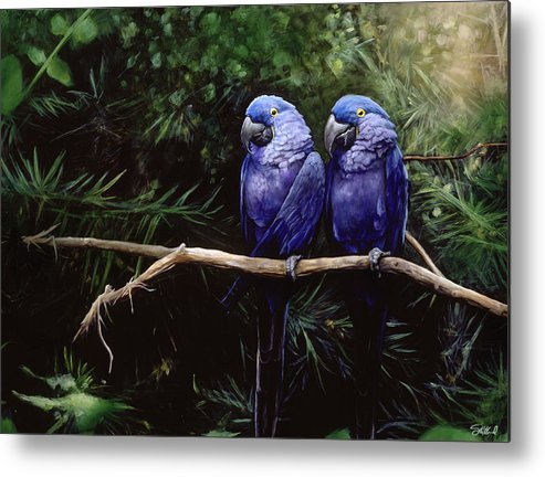 Macaw Art Metal Print featuring the painting Twins by Steve Goad