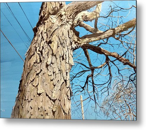 Tree Metal Print featuring the painting Witness by William Brody