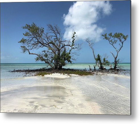Key West Florida Waters Metal Print featuring the photograph Key West Waters by Ashley Turner