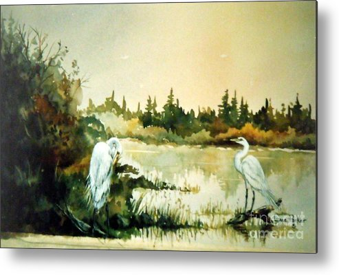 Egret Pair At Lake Metal Print featuring the painting  Egrets at Dead Lake by Lynne Parker