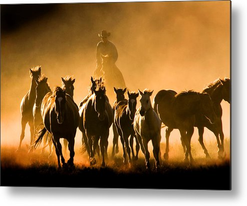 Horses Wrangler Ranching Metal Print featuring the photograph Driving the Herd by Lourie Zipf