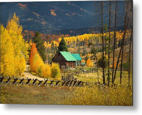 Aspens Metal Print featuring the photograph Aspens 2 2014 by Jim Painter