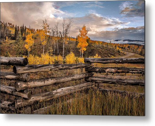 Aspens Metal Print featuring the photograph Aspens 5 2014 by Jim Painter