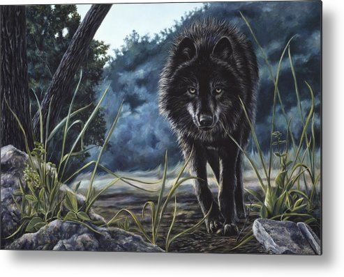 Wolf Metal Print featuring the painting Black Wolf Hunting by Lucie Bilodeau