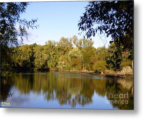 Waterscape Metal Print featuring the photograph Delta Lake Reflections by Rennae Christman