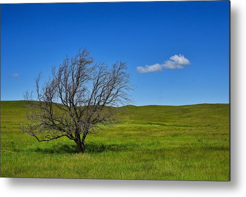 Fare Well Metal Print featuring the photograph Fare Well by Skip Hunt