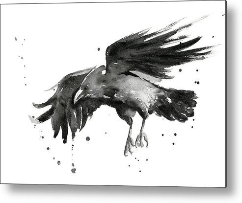 Raven Metal Print featuring the painting Flying Raven Watercolor by Olga Shvartsur