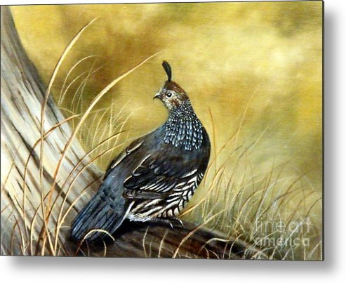 Quail Sunning Metal Print featuring the painting Quail on log by Lynne Parker