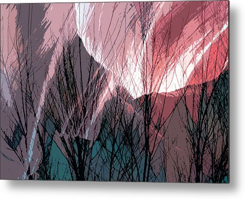 Digital Metal Print featuring the digital art Branches In The Canyon by Richard Coletti