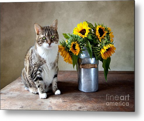Cat Metal Print featuring the painting Cat and Sunflowers by Nailia Schwarz