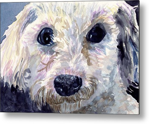 Bichon Frise Metal Print featuring the painting Did You Say Lunch by Sharon E Allen