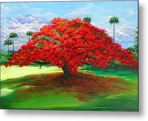 Flamboyant Tree Metal Print featuring the painting Flamboyant Ablaze by Karin Dawn Kelshall- Best