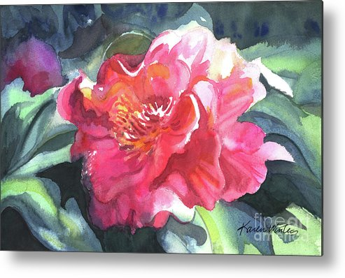 Camellia Metal Print featuring the painting Full Blown by Karen Winters